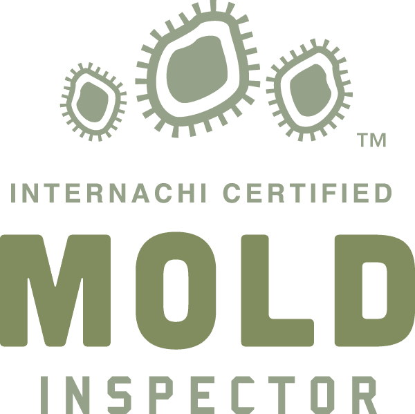 mold inspector internachi certified