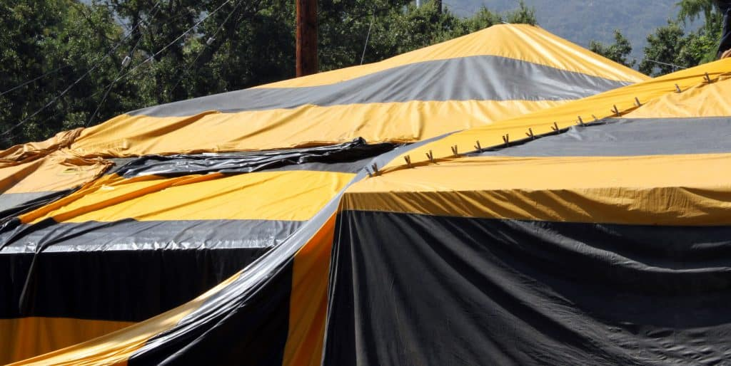 black and yellow fumigation tent over house